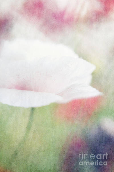 Airy Photograph - suffused with light VI by Priska Wettstein