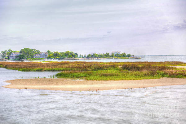 Photograph - Sullivan's Island Sc by Dale Powell