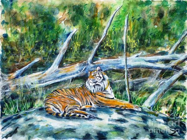 Wall Art - Painting - Sumatran Tiger At Point Defiance Zoo by Zaira Dzhaubaeva