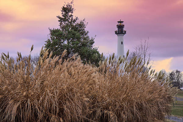 Photograph - Sumersville Lighthouse Wv by Mary Almond
