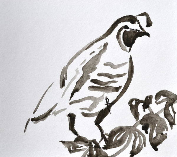 Japanese Poetry Painting - Sumi-e Quail by Beverley Harper Tinsley