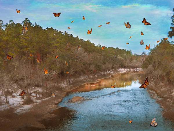Photograph - Summer At The River by Judy Hall-Folde