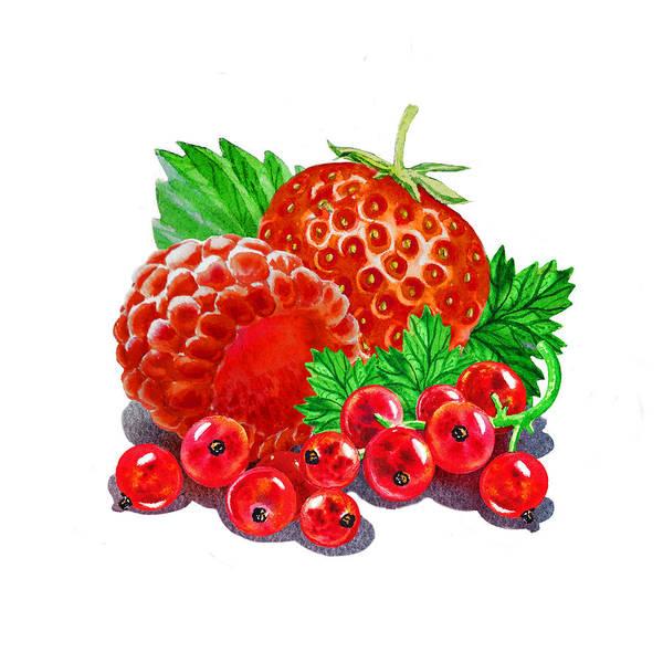 Wall Art - Painting - Summer Berries by Irina Sztukowski