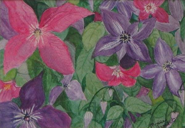 Painting - Summer Clematis by Monica Ironside