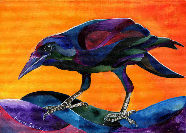 Painting - Summer Crow 3 by Sherry Shipley