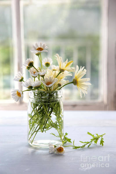Photograph - Summer Daisies In Glass Jar by Sandra Cunningham