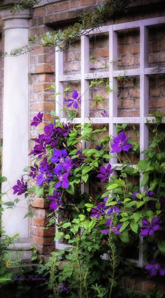 Chicago Botanic Garden Photograph - Summer English Garden by Julie Palencia