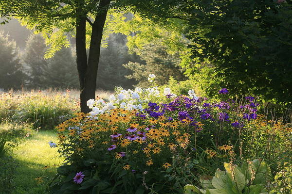 Photograph - Summer Flower Adourn A Farm Garden by Kenneth Ginn