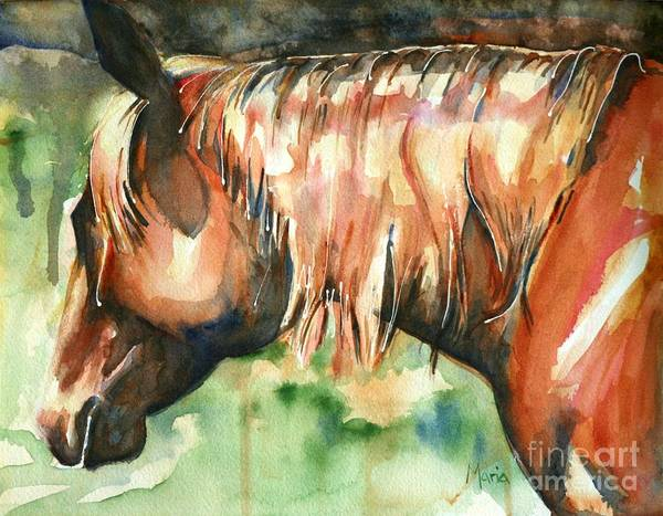 Aqha Painting - Horse Painting In Watercolor Summer Horse by Maria's Watercolor