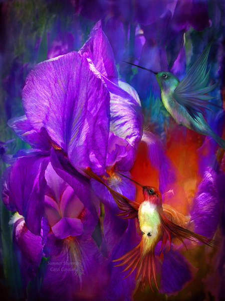 Purple Iris Mixed Media - Summer Hummers by Carol Cavalaris