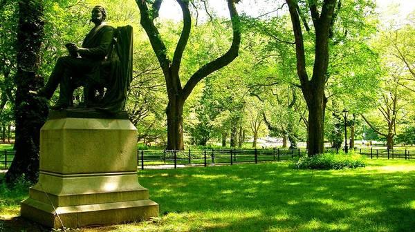 Summer In Central Park Manhattan Art Print