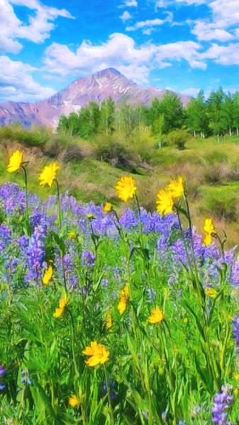 Digital Art - Summer In Colorado by Rick Wicker