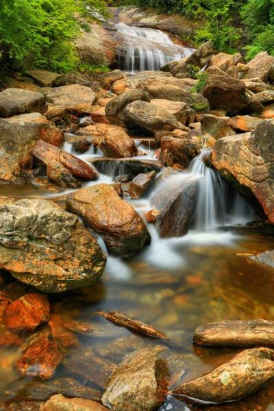 Photograph - Summer Morning At Lower Falls by Carol Montoya
