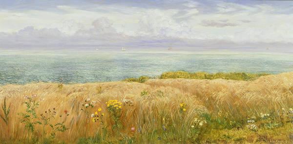 Safe Painting - Summer On The Cliffs by John Brett