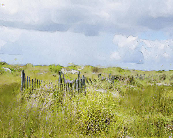 Wall Art - Photograph - Summer On The Dunes by Dave Sandt