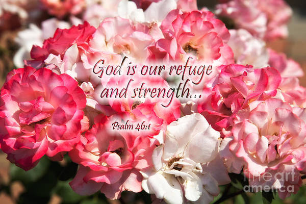 Photograph - Summer Roses With Scripture by Jill Lang