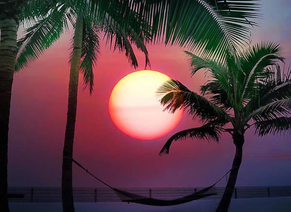 Photograph - Summer Sun by Bill Cannon