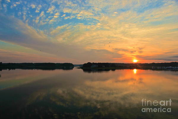 Photograph - Summer Sunrise by Amazing Jules