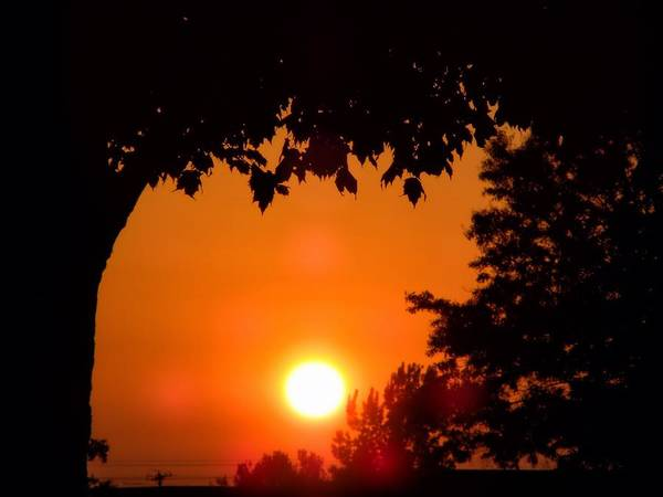 Wall Art - Photograph - Summer Sunrise Right Side by Thomas Woolworth