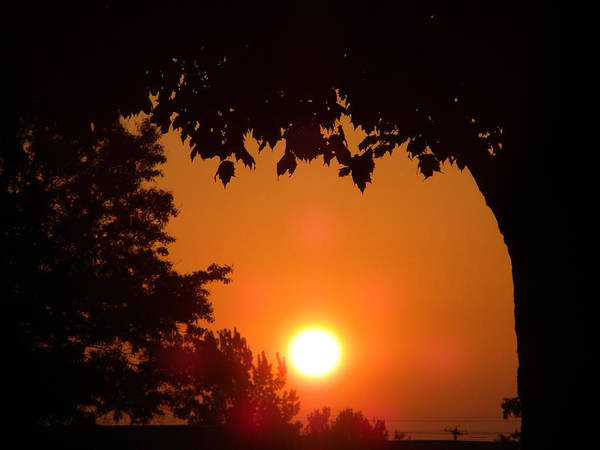 Wall Art - Photograph - Summer Sunrise by Thomas Woolworth