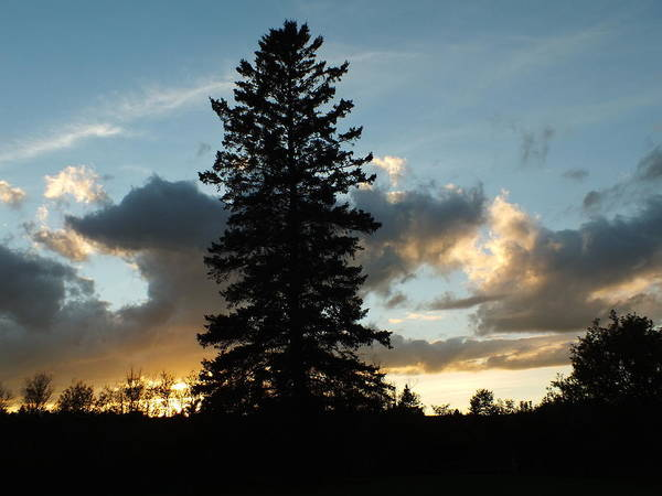 Aroostook County Photograph - Summer Sunset 1 by Gene Cyr