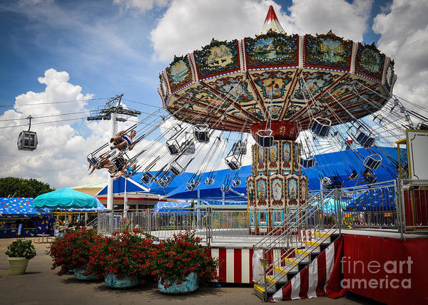 Photograph - Summer Swings by Cheryl McClure