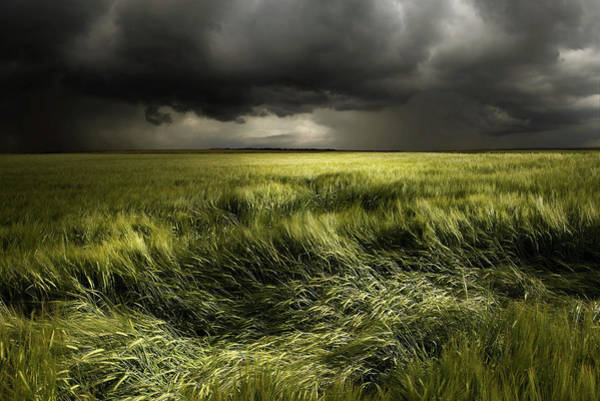 Storming Wall Art - Photograph - Summer Weather by Franz Schumacher