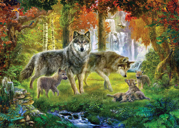 Pup Photograph - Summer Wolf Family by MGL Meiklejohn Graphics Licensing