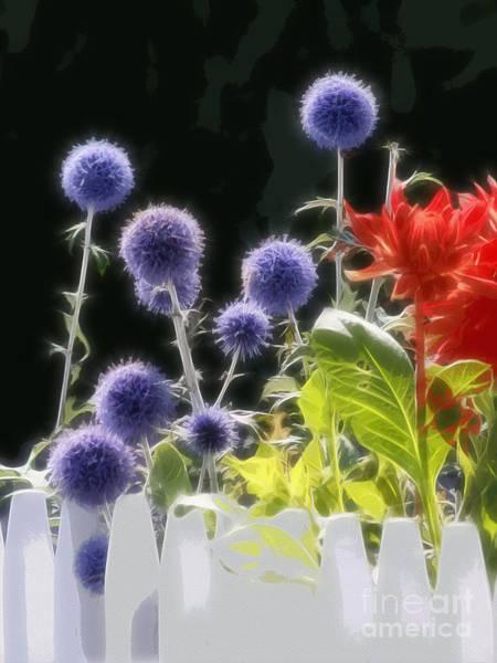Photograph - Summerflowers Graphic by Lutz Baar