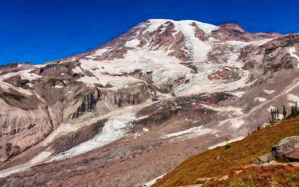 Photograph - Summertime At Mt Rainier by John M Bailey
