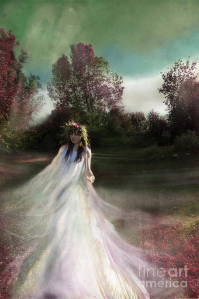 Wall Art - Photograph - Summertime Fairy by Angel Ciesniarska