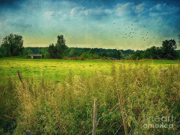 Photograph - Summertime by Jutta Maria Pusl
