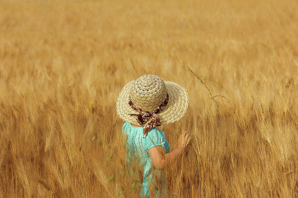 Wheat Wall Art - Photograph - Summertime by Olga Fomina