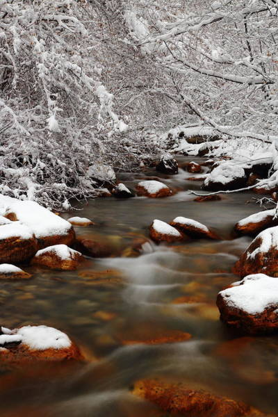 Photograph - Summit Creek Winter by David Andersen