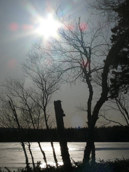 Wall Art - Photograph - Sun And Ice by Brenda Ketch