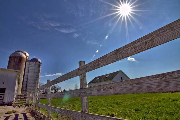 Photograph - Sun Flare Farm by Dan Sproul