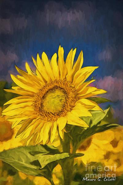Pyrography - Sun Flower by Mauro Celotti