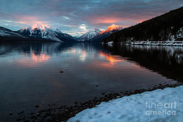Photograph - Sun Kissed 1 by Katie LaSalle-Lowery