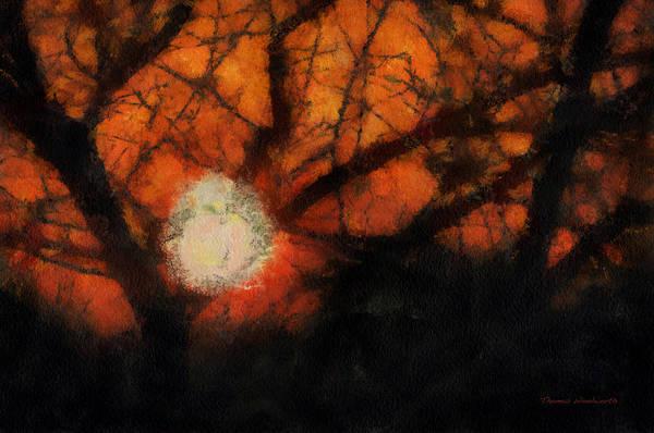 Wall Art - Photograph - Sun Light Photo Art 13 by Thomas Woolworth