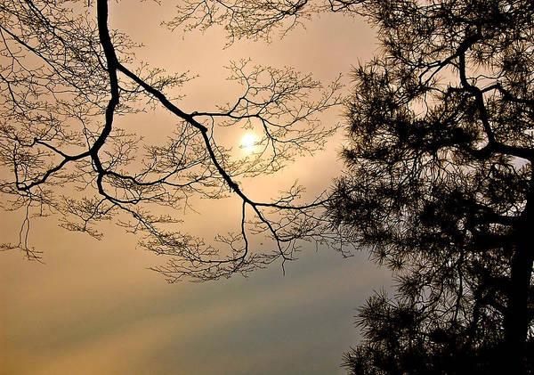 Photograph - Sun Moon by Yen