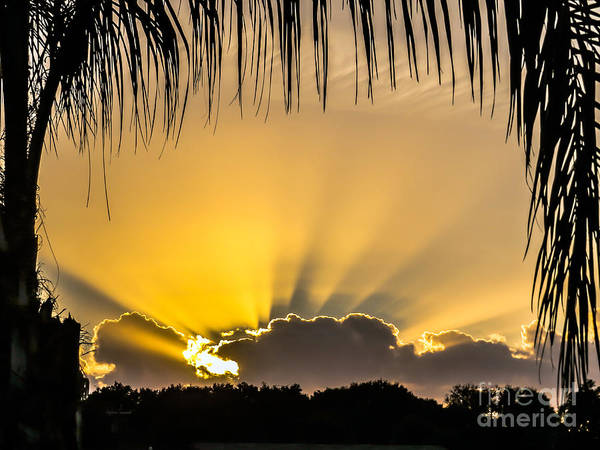 Silhoutte Photograph - Sun Out Through The Cloud by Zina Stromberg