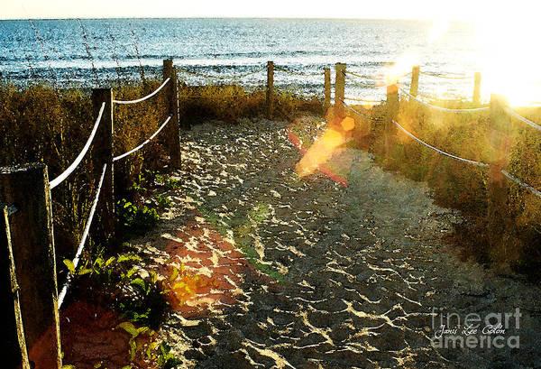 Photograph - Sun Ray Beach Path by Janis Lee Colon