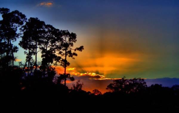 Photograph - Sun Rays Blaze by Tyson Kinnison