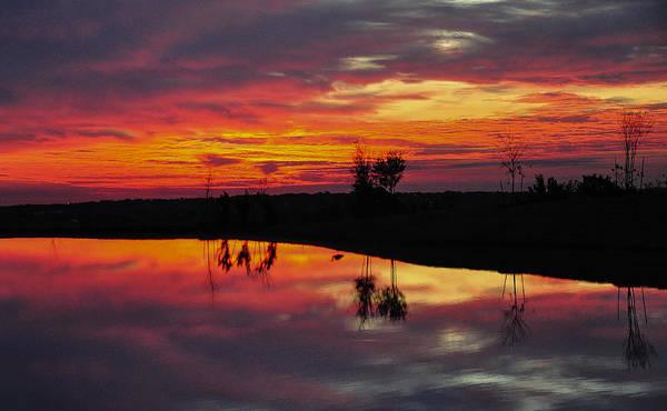 Photograph - Sun Rise With Heron Shadow by John Johnson