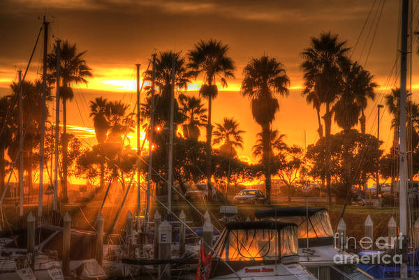 Photograph - Sun Setting At Marina by Dan Friend