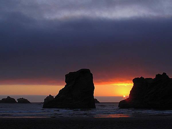 Photograph - Sun Splendor by Suzy Piatt