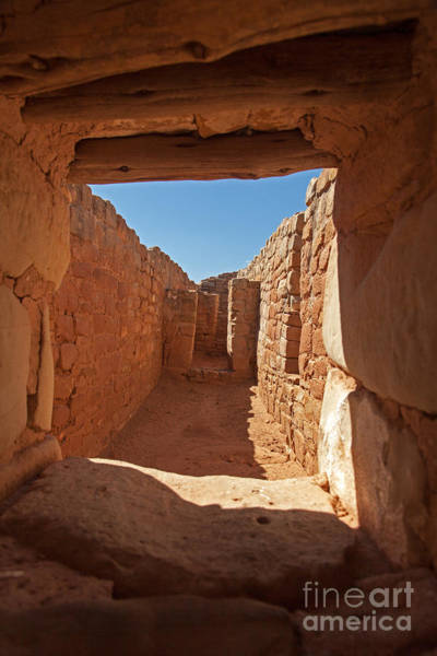 Photograph - Sun Temple Mesa Verde National Park by Fred Stearns