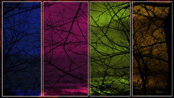 Photograph - Sun Through Colored Glasses by Ericamaxine Price