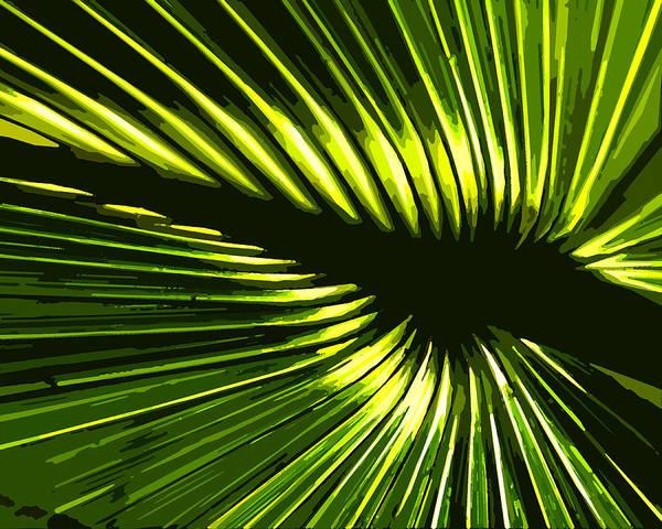 Palm Frond Digital Art - Sun Through The Palms by Norman Johnson