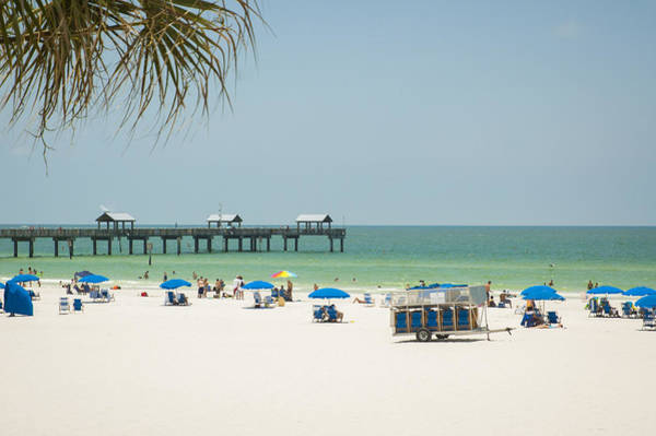Photograph - Sunbathing At Clearwater Beach by Carolyn Marshall